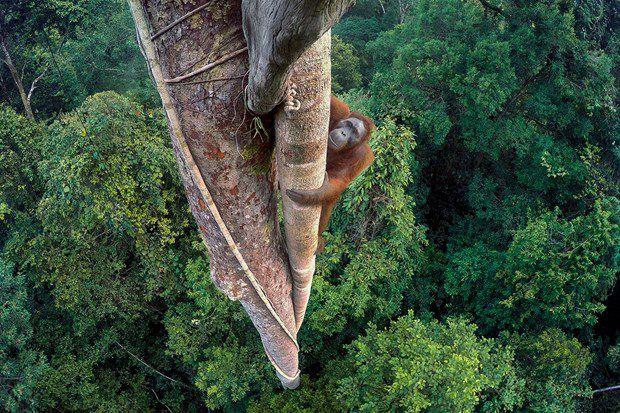 عکس عکاس آمریکایی که برنده جایزه معتبر عکاسی شد