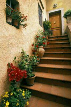 وقتی خانه نیستم ،کلید را دم پله اول زیر همان گلدان سفالی همیشگی گذاشته ام رویایت اگر آمد پشت در نمیماند