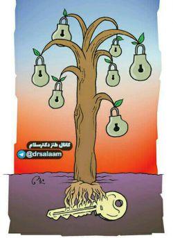 ریشه درخت گلابی پیدا شد ...      درضمن دوستان لطفا درباره #صندوق_ذخیره فرهنگیان شایعات را نشر ندهید، چون صندوق سر جاش هست، فقط پولاش نیست که اون هم موضوع چندان مهمی نیست!