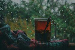 تا تو باشی چای شعرم تازه دم با قند توست.... بی تو اما طعم دنیا از جهان افتاده است....
