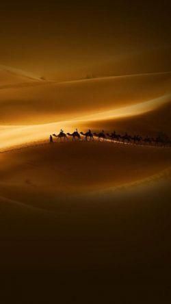زمانی شعر می گفتم برای غربت باران/ ولی حالا خودم تنهاترم تنهاتر از باران... یا سید الشهدا(ع)