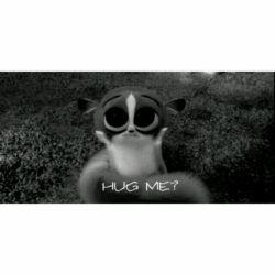 کاش مامانم میومد بغلم میکرد :) میگف غصه نخور گریه نکن من پیشتم :) اما همیشه میگه ما چی برات کم گذاشتیم که از زندگیت ناراضیی :) اون فک میکنه همه چی مادیاته :) نمیدونه من توجه میخوام :) نمیدونه من یه بغل محکم میخوام :) نمیدونه یه دل گرمی میخوام که دیگه تو گوشیم نباشم :) اون هیچی از شبای من نمیدونه :) هیچی نمیدونه :)  #shabah
