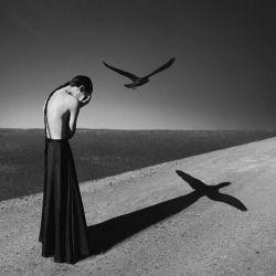 انسانیت رافریفته اند صداقت را در شیشه ی ناباوری ریخته اند  عشق را به تمسخر گرفته اند وفا رادر دره ی مرگ انداخته اند