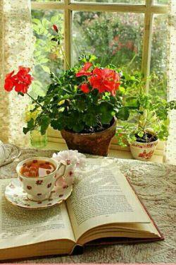گنجشک و هوای پاک    نم نم دارد...صبحانه ی شعر و چایی دم دارد... لبخند بزن :) پنجره هارا وا کن...یک 《صبح بخیر》این وسط کم دارم...
