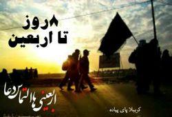 #حسین_ع_جانم❣