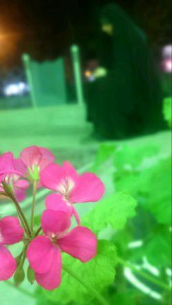 ای پیاده خوش بحالت... چای حضرت میخوری  من که این شبها همش؛ چایی حسرت میخورم...  ❤️ اللهم الرزقنا کربلا❣