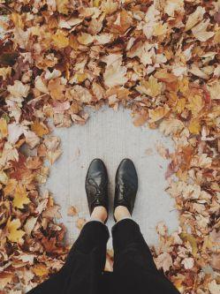 پاییز از راه رسیده  صدای پایت شنیدنی نیست  با تمام وجودم آمدنت را حس می کنم  هر قدم یک جان دوباره و یک تازگی در من می آفریند  نزدیکتر شو تا زنده شوم از نو