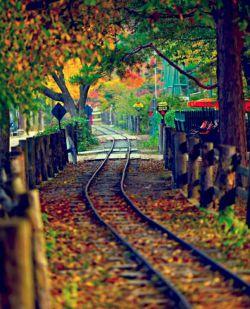 پاییز شدم از آن بهاری که تویی/ آواره شدم از آن دیاری که تویی/  بازی قطار بچگی هامان ، آه.../ این کوپه جدا شد از قطاری که تویی