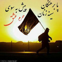 عکس نوشته آهنگ خادم الحسین ع با صدای حامد زمانی
