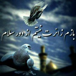 #باز_هم_زائرت_نیستم_از_دور_سلام