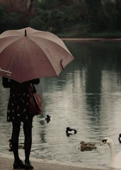 کاش من باران بودم و تو ...در روزی بارانی بدون چتر در خیابان بودی...