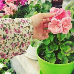 مثل من باغچه ی خانه هم از دوری تو،بس که غم خورده و لاغر شده گلدان شده است....    *♣مانده ام بی تو چرا باغچه ام گل دارد♣*