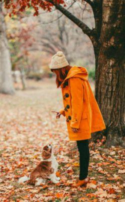رفتن های پاییز با همیشه فرق میکند؛وقتی در پاییز می رود خیلی چیز هارا یاد می گیری.وقتی در پاییز تنها میشوی ،به این فکر می کنی که پاییز را مگر می شود بی او به پایان رساند...؟