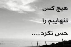 فکر نکنم کسی اصلا کلا من و درک کرده باشهبه حرفام به رویا هام گوش کنع چه برسه به این که تنهایی مشکلات من و درک کنع:(