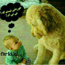 @hanieh15  bfrmma