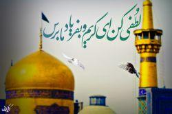 لطفی کن ای کریم و بفریاد ما برس ... السلام علیک یا علی ابن موسی الرضا(ع)