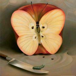 گاهی اوقات پروانه ها هم کرم نمیشوند