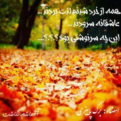 همه از خرد شدنم لذت بردند.../ عاشقانه سرودند.../ این چه سرنوشتی بود؟.؟.؟.../ امضاء: برگ پاییزی  #هاشم_نگاشت