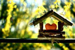 کلبه ای ک در آن مهربانی هست،  و ساکنینش می خندند... بهتر از کاخی است، که مردمانش دلتنگ هستند!