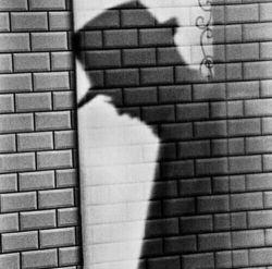 پناه میبرم ب خدا!از عیبی ك امروز در خود میبینم و دیروز دیگران را ب خاطر همان عیب ملامت كرده ام...محتاط باشیم در سرزنش كردن دیگران وقتی ن از دیروز او خبر داریم ن از فردای خودمان...