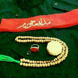 کلنا عباسک یا زینب (س)