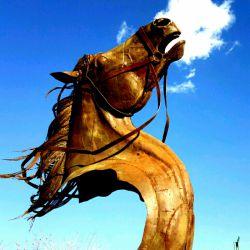 اسب عاشورایی با ضایعات آهن