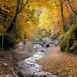 صبحتان به طراوت  باران دلتانبه پاکی   نسیم صبحگاهی  افکارتان سبز وپایدار  لحظه ها تان زیبا و بارش   بوسه های خدا پای تمام   آرزوهاتون سلااااااام صبحتون بخیر       ....جنگل زیبای کبودوال