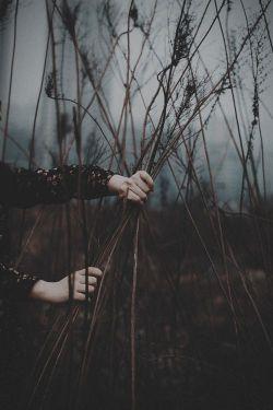 قــسم به نــام تــو یادت نشد جدا از مــن   چنان به سوی تو با سر دویدم از سر شوق  کـــه روی بـــرف نمــاندست ردپـــا از مــن