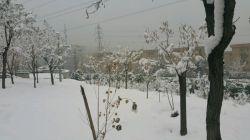 تهران : برف زمستان شهرک شهید محلاتی