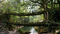 استان Meghalaya هند را پربارانترین نقطه دنیا میدانند، طوری که در یکی از روستاهای آن به نام Mawsynram سالانه حدود ۱۱۸۰ سانتیمتر باران میبارد.