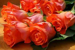 #گل رو دوست دارم #نارنجی رنگ و #سیاه ...