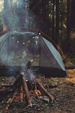 باید به جای آرامبخش ، چند روزی زندگی تو کلبهی جنگلی رو تجویز میکردن...