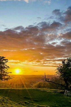 برخیز آغوشت را از صبح پر کن...  آغاز شو مانند روزهای آفتابی... جهان منتظر بانگ سلام های آشنای توست...  پس عاشقانه و بلند به زندگی امروزت  سلام کن.... سلام زندگی... صبح پنج شنبه بیست و پنجم آذرماه 1395 بر شما مبارک ...