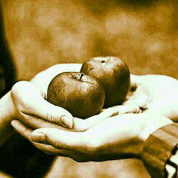 """مهربانی دیوار نمی خواهد ...  مهربانی  یک دل دریایی می خواهد...  دلی به وسعت   دشت...  و دشتی به اندازه                 """"گذشت.. جمعه تون زیبا"""