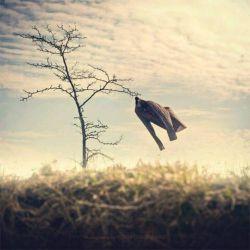 عبدالله بن مبارک رحمه الله میگوید:  از بدترین مصیبتها برای شخص این است که در خود کوتاهی و تقصیری ببیند، سپس نه به آن اهمیت دهد و نه برایش ناراحت شود