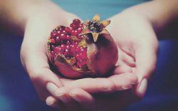 ترک دارد دلم همچون انار آخر پاییز.. همه شبهای دلتنگی .. بدون تو شب یلداست...!