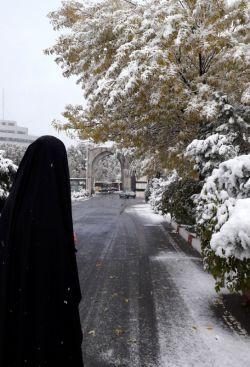 تا نیست نگردی ره هستت ندهند    این مرتبه با همت پستت ندهند   چون شمع قرار سوختن گر ندهی   سر رشته روشنی بدستت ندهند    #hijab   #iran #iranianwomens