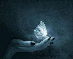 آزادی واژه زیبایی است که حتی حاضر نیست حروفش بهم وابسته باشد  تنها راه رسیدن به آزادی ،  رهایی از وابسته بودن است...