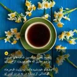 سلام صبح دوشنبتون بخیر وخوشی...ان شاالله تو این روز خبرای خوبی بهتون برسه