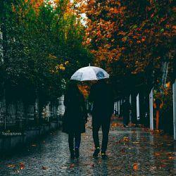 """"""" تو"""" در جان ِ منی و هرگز نروی از یادم بارانی ام و از آفتاب ِ حضورت ، دلشادم  چه شادم و مست و غزلخوان ، نازنینم که دل به سیاهی شب ِ چشمان تو دادم"""