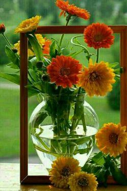 ﺷﺎﻳﺪ؛   ﻓﺎﺻﻠــــــــــــــــﻪ ﻫﺎ ...   ﺑﺘﻮﺍﻧﺪ ﺟﺴﻤﻬﺎ ﻭ ﻧﮕﺎﻫﻬﺎ ﺭﺍ ﺍﺯ ﻫﻢ ﺩﻭﺭ ﻛﻨﺪ،   ﻭﻟﻰ ﻗﺪﺭﺕ ﺍﻳﻦ ﺭﺍ ﻧﺪﺍﺭﺩ   ﻛﻪ قلبها و یادها را از هم جدا کند   ﺑﻪ ﯾﺎﺩ ﻫﻢ ﺑﻮﺩﻥ   ﻗﺸﻨﮕﺘﺮﯾﻦ ﻫﺪﯾﻪ ﺍیست ﮐﻪ ﻧﯿﺎﺯ ﺑﻪ ﺑﺎ ﻫﻢ ﺑﻮﺩﻥ ﻧﺪﺍﺭد.    این گلهای زیبا تقدیم به قلبهای مهربونتون ، خیلی دوست تون دارم ♥✋♥✋♥✋♥