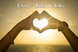 عشق در لحظه پدید می آید، دوست داشتن در امتداد زمان، و این اساسی ترین تفاوت میان عشق و دوست داشتن است. دکتر محمود حسابی