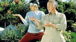 پسر کاراته 1