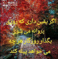 Wahid Khfaji: *سلطان دلها* باش ، اما دل نشکن بگذار همه عاشقت باشند اما تو عاشق یک نفر باش... پله بساز اما از کسی بالا نرو ، دورت را شلوغ کن اما در شلوغی ها خودت را گم نکن... *طــلا* باش اما خاكی ...  روزتان سرشار از عطر خدا