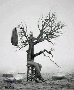 هر کجا هوا مطابق میلت نشد برو..... فرق تو با درخت همین پای رفتن است