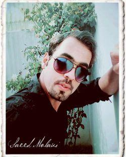 سعیدمولوی saeed molavi