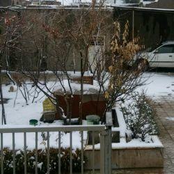 جمعه نیمه برفی