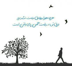 هرجا هوا مطابق میلت نشد برو . . ./فرق تو با درخت همین پایِ رفتن است «سعید صاحب علم»