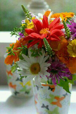 سلام دوستان شبتون بخیر^_^ این گل های زیبا تقدیم ب شما :) تگ آزاد