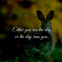 یا تو روز رو مدیریت می کنی یا روز تو رو (either...or) #انگلیسی  #english #English